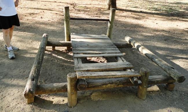 torrijos-parque-amate-020812