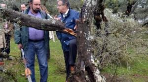 El líder del PP de Andalucía ha visitado la Sierra Norte de Sevilla para valorar los efectos de la nevada del 28 de febrero / Sevilla Actualidad