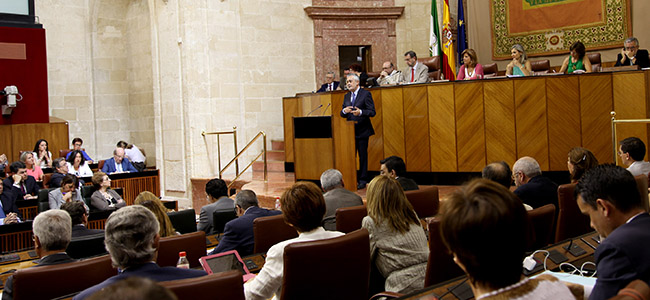 grinan-pleno-debate-estado-andalucia-2