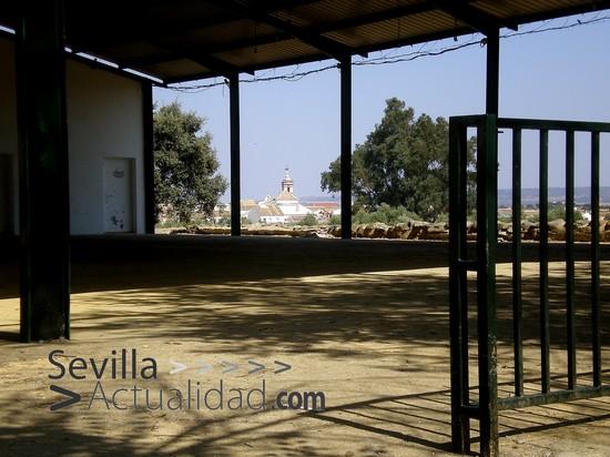 recintoferial-julio2010-jcrm