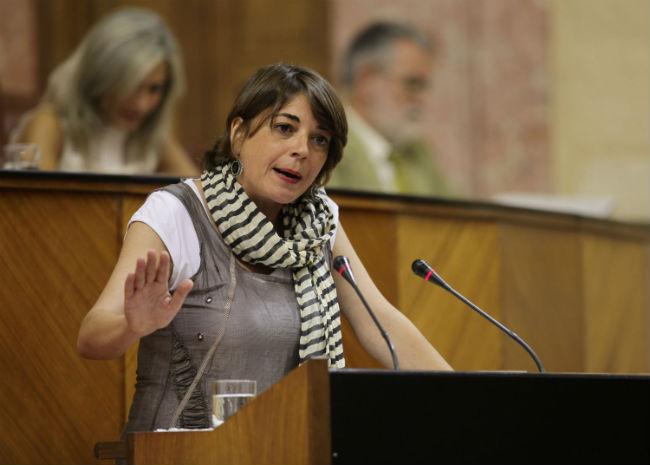 La consejera de Fomento, Elena Cortés, en una intervención parlamentaria
