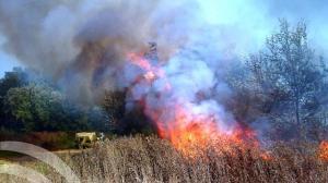incendio alcolea del rio