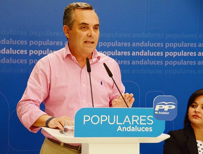 El-presidente-del-PP-de-Sevilla-Juan-Bueno