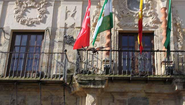 campana-palomas-edificios-municipales