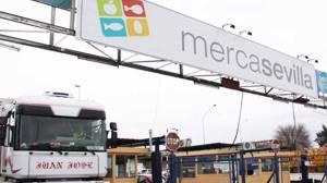 mercasevilla-2015