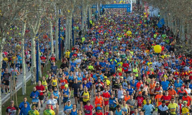 maraton-sevilla-2016-corredores-juan-jose-ubeda