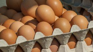 huevos-docenas