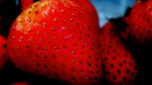 fresas-brunoc-flickr
