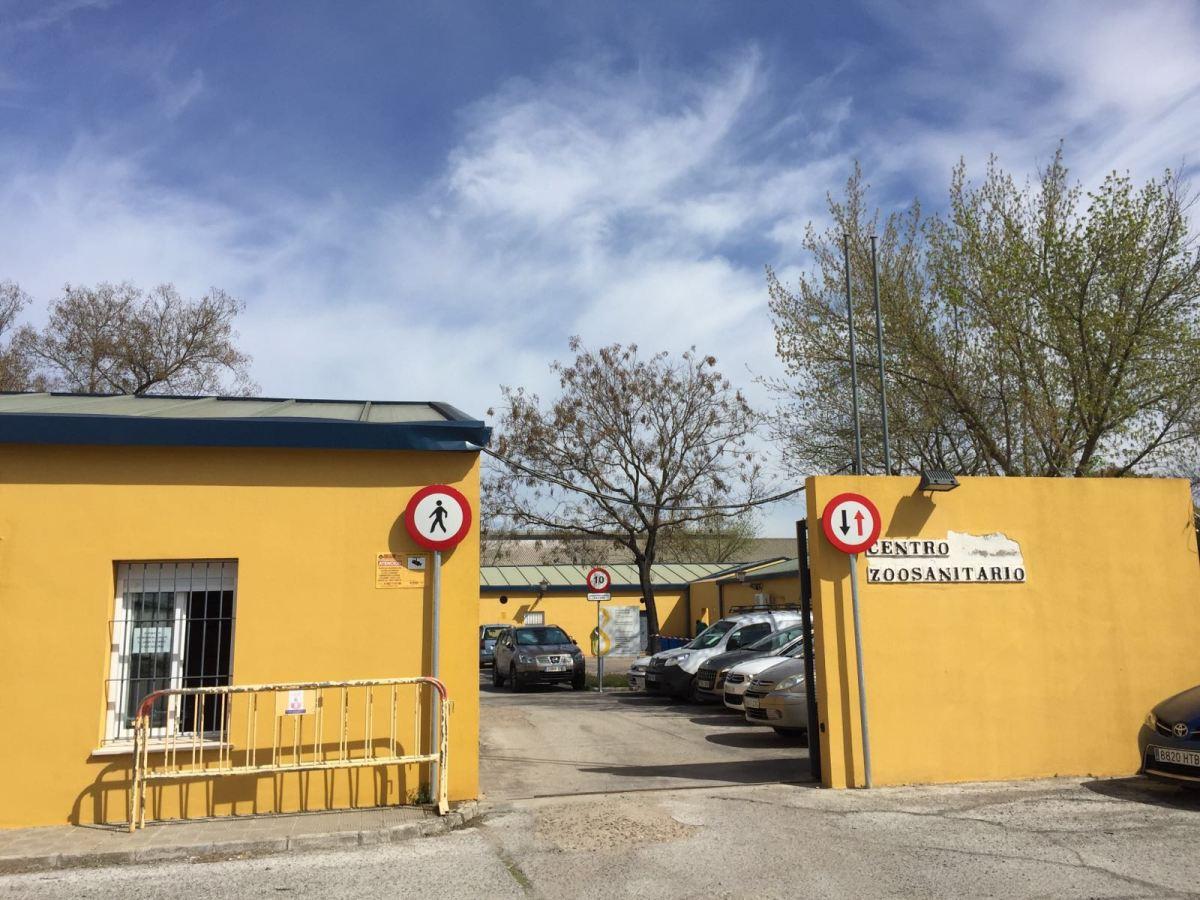 zoosanitario municipal /SA