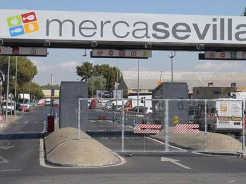 Mercasevilla /SA