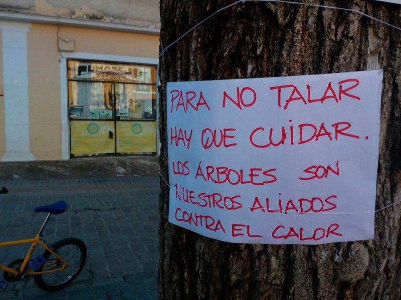 Carteles contra el arboricidio en el Pumarejo /SA