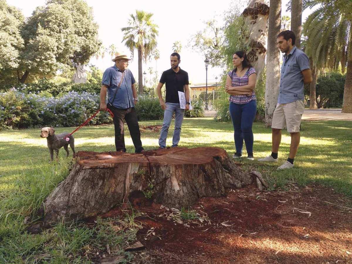 Parque María Luisa / IU