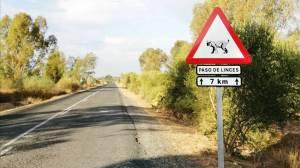 Carretera SE-3302 junto a la Dehesa de Abajo en Sevilla