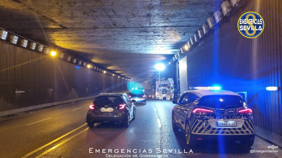 Desprendimiento en la avenida Cardenal Bueno Monreal / ES