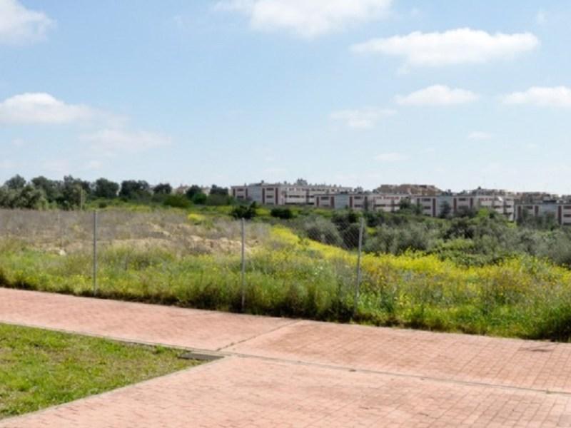 nuevo colegio en Tomares