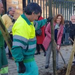 El Ayuntamiento planta 400 nuevos árboles, ahora en Sevilla Este y Torreblanca