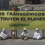 Greenpeace vive del hambre y enfermedad en el Tercer Mundo