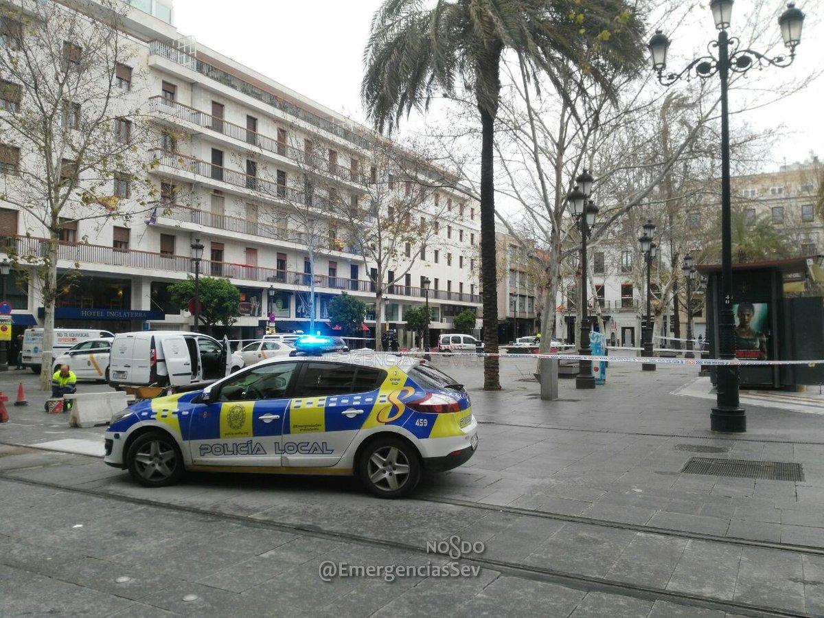 La Plaza Nueva cerrada ante la amenaza de caída de una palmera