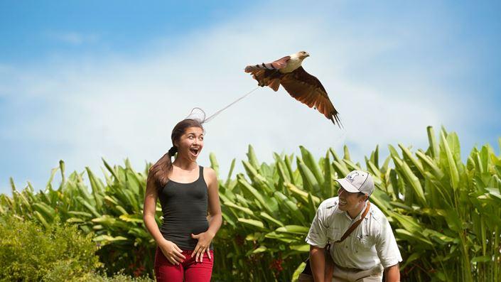 Bali Bird Park - Taman Burung di Bali 01