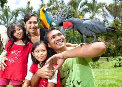 Bali Bird Park - Taman Burung di Bali 04