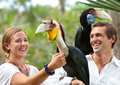 Bali Bird Park - Taman Burung di Bali 06