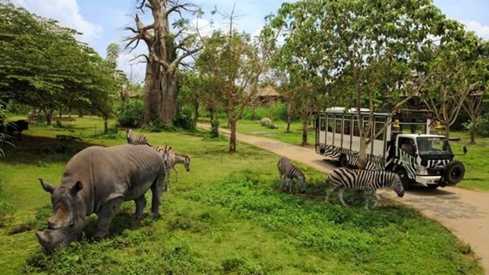 Bali Safari & Marine Park Harga Tiket Masuk Domestik