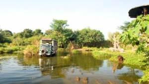 Bali Safari & Marine Park Harga Tiket Masuk Domestik 2