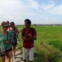 Trekking di Bali dengan Jalur Sawah Pedesaan