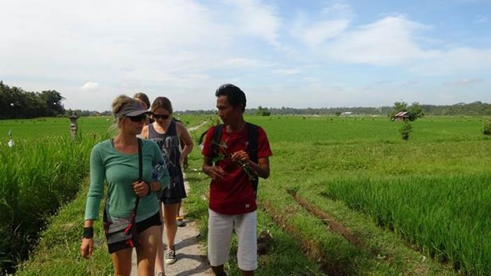 Rice Paddy Trekking