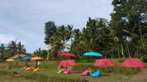 Camping di Bali Lokasi Desa Wisata Pule Yang Indah - Gallery Image 130420208