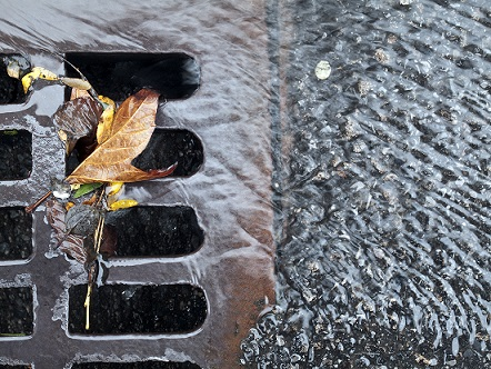 Milwaukee Drain Cleaning Services  Prompt Professional