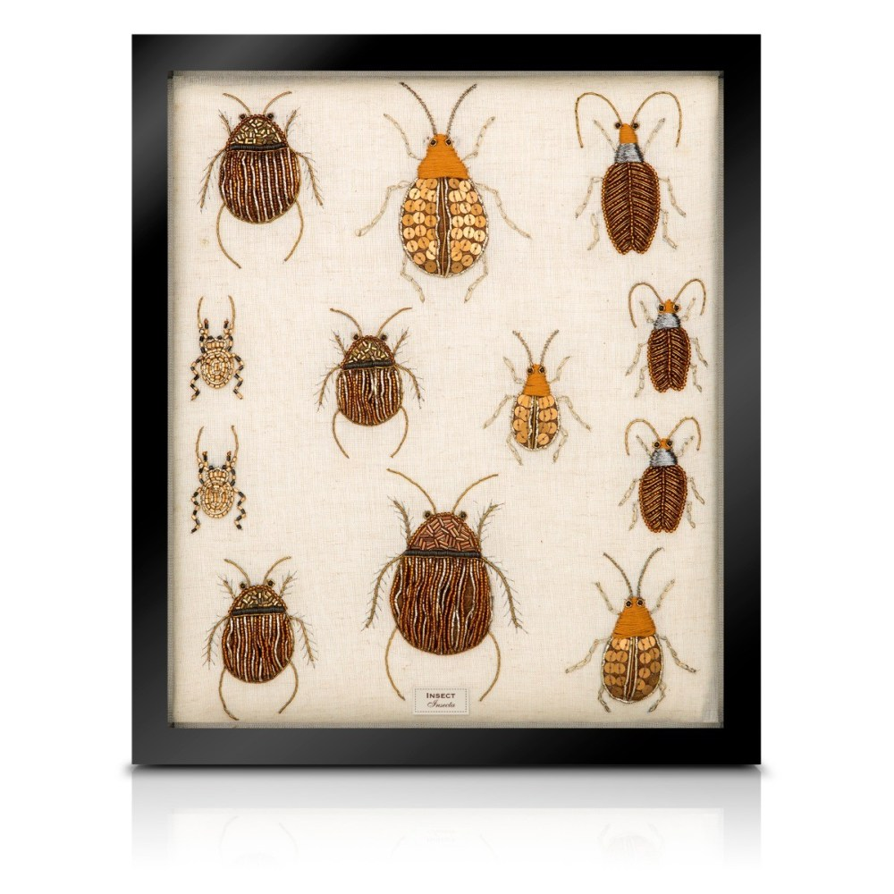 medium resolution of beaded beetle collection
