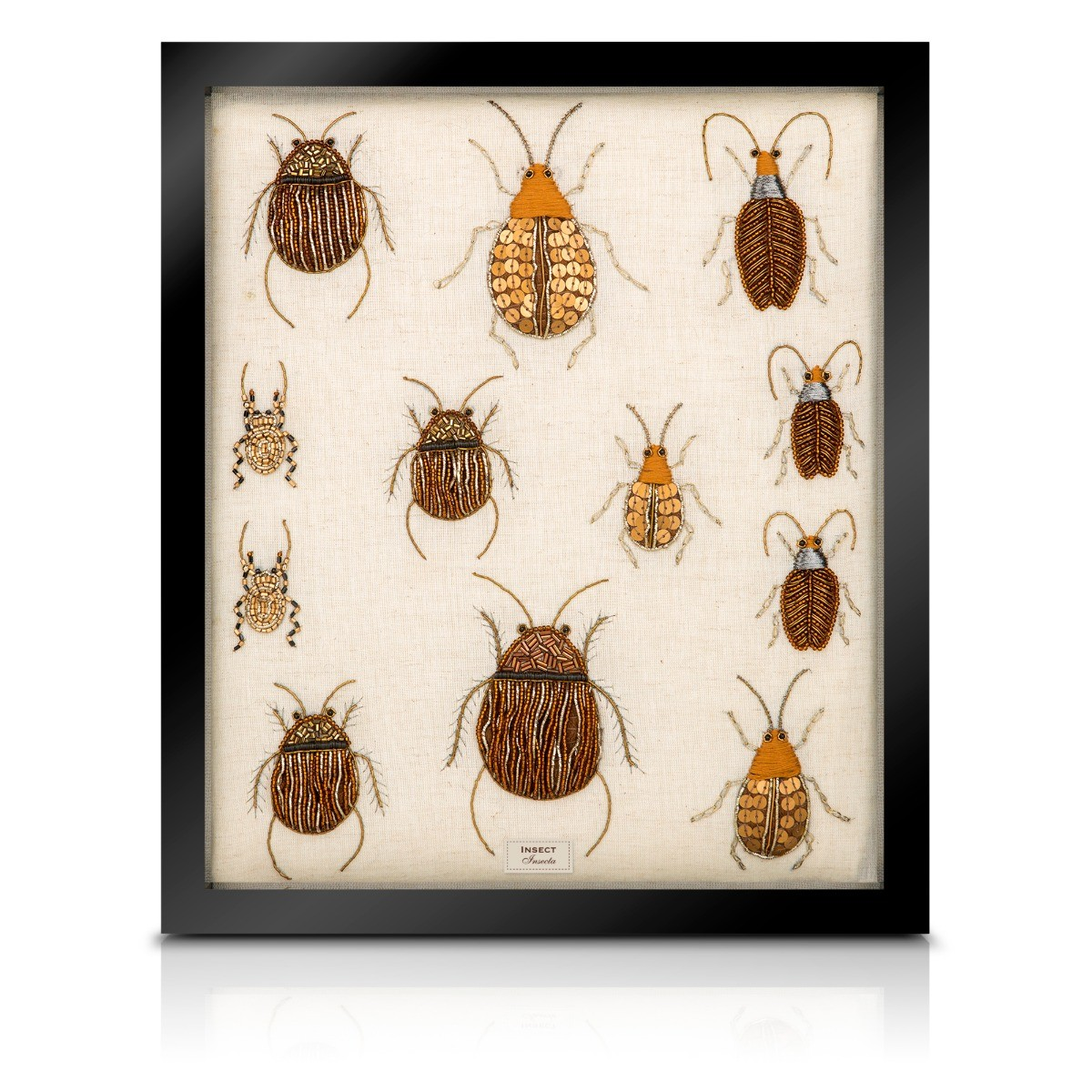 hight resolution of beaded beetle collection