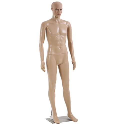 FDW Realistic Mannequin Manikin Dress Form