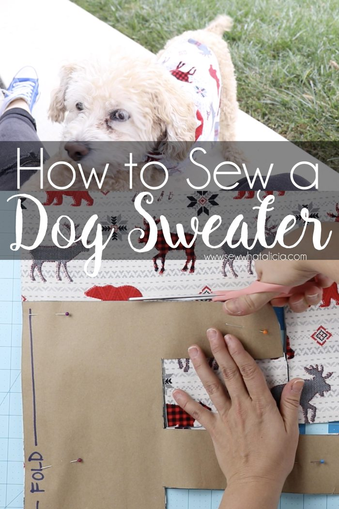 How to Make Dog Sweaters: If you have always wanted to know how to make a dog sweater/jacket then this post is for you. Walk through drafting a pattern and sewing the jacket. Click through for a full video and written tutorial. | www.sewwhatalicia.com