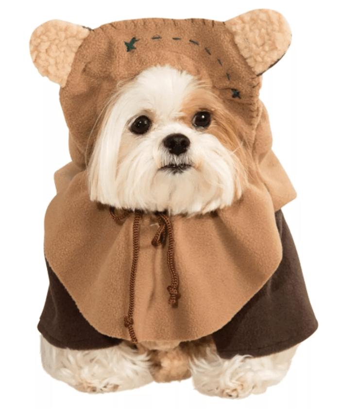 dog in ewok costume