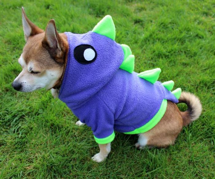 small dog wearing fleece dinosaur hoodie