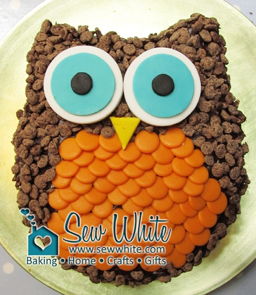 My Really Easy Owl Cake covered in chocolate chips with fondant sugar paste eyes and beak
