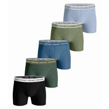 Björn Borg Kalsonger 5P Essential Shorts 2115 Flerfärgad bomull XX-Large Herr