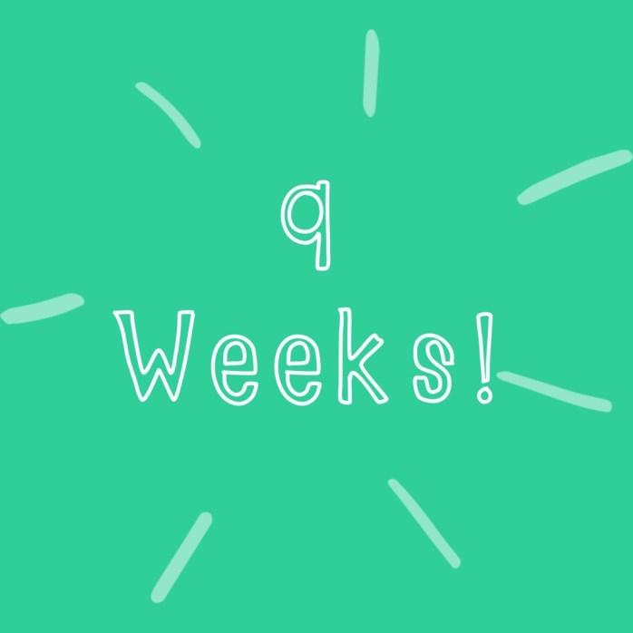 30 weeks pregnant!  Countdown to Caesarian date