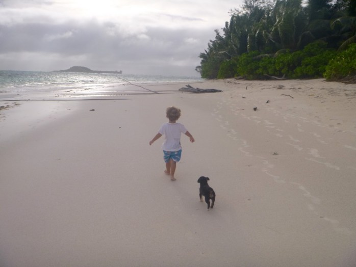 Family walk. Toddler and Puppy on the beach. Praslin Seychelles