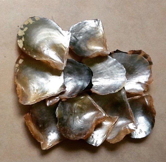 island Christmas decorating. Oyster shells