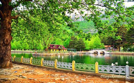 Seydişehir Kuğulu Park İlkbahar