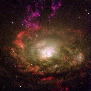 https://i0.wp.com/www.seyfertgalaxies.com/Circinus.galaxy.jpg