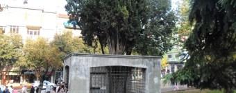 Timurtaş Paşa Türbesi Bursa