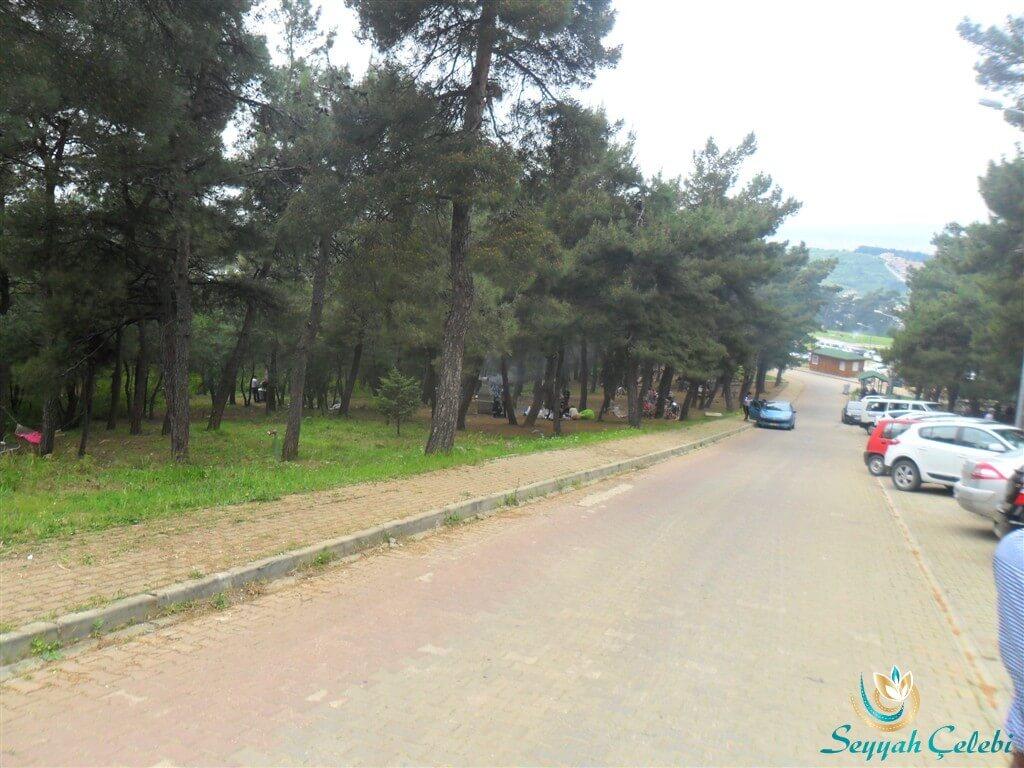 Bursa Atatürk Kent Ormanı Güzelliği