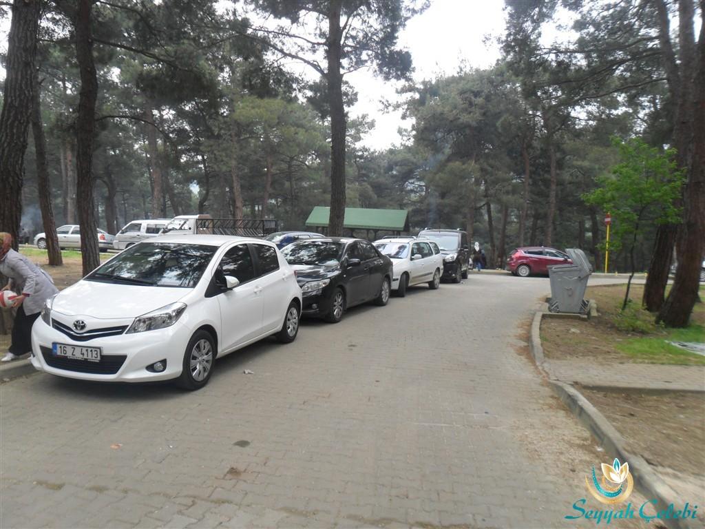 Bursa Atatürk Kent Ormanı Yol Boyu Park