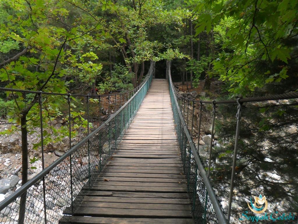 Hamamlıkızık Kent Ormanı Köprü
