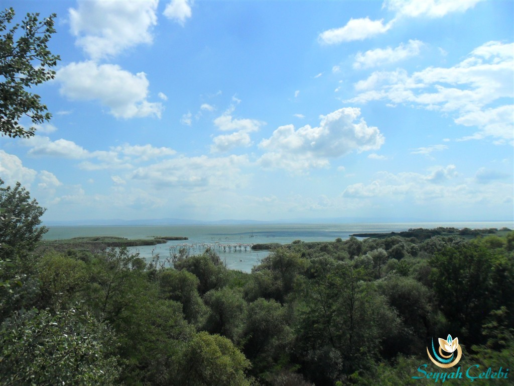 Manyas Kuşgölü
