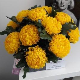 Coupe de chrysanthème jaune CP058
